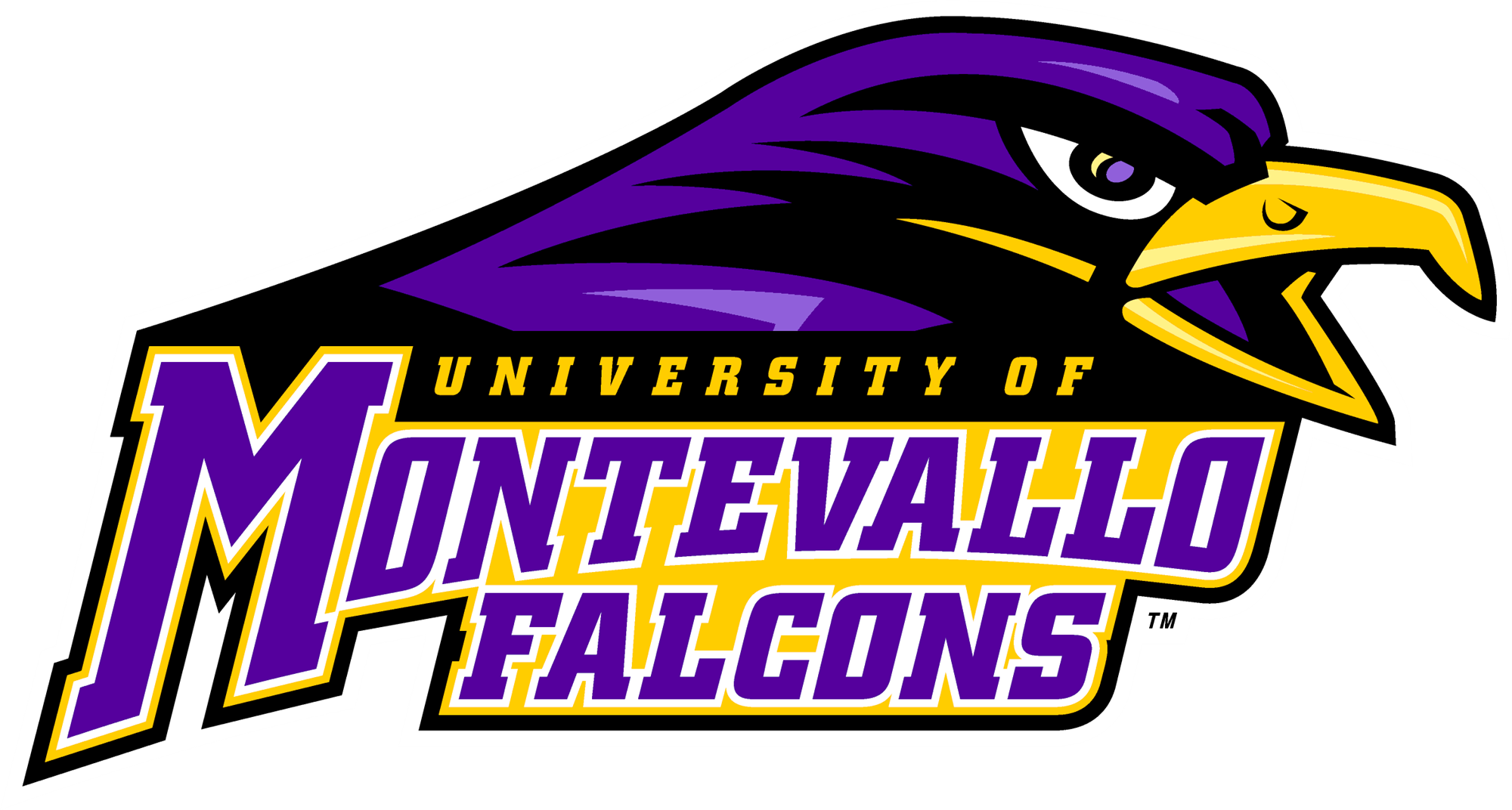 https://tnxlacademy.com/wp-content/uploads/2019/11/62-626315_seventeen-falcons-playing-in-collegiate-summer-leagues-university.png